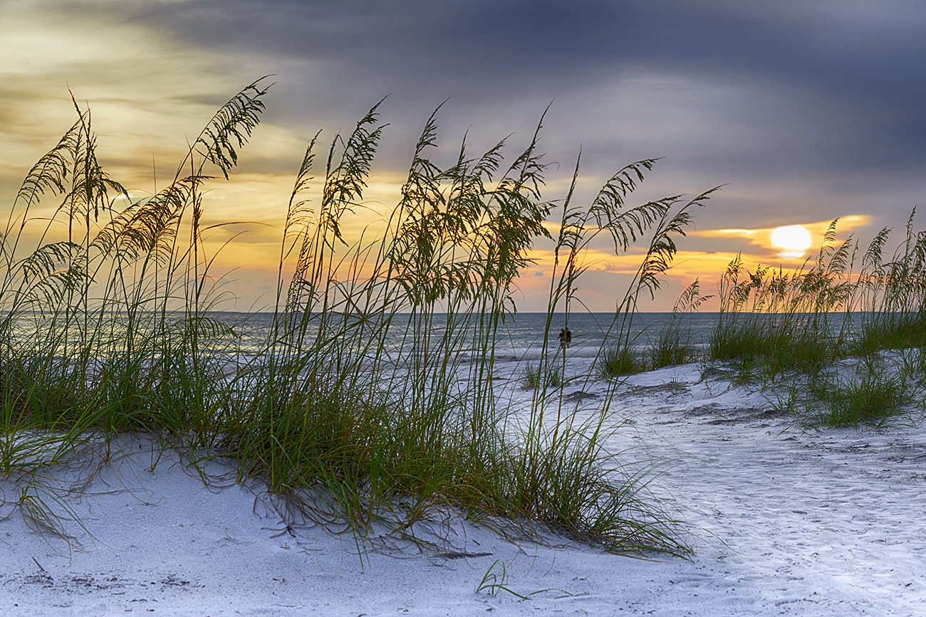 Sunset walk by the Gulf of Mexico