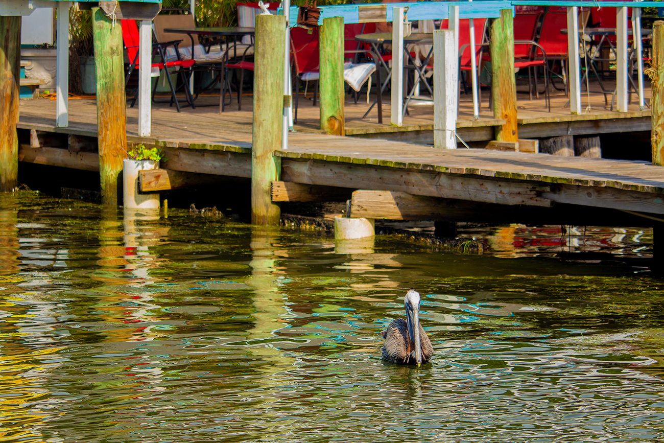 Minutes from popular Florida attractions