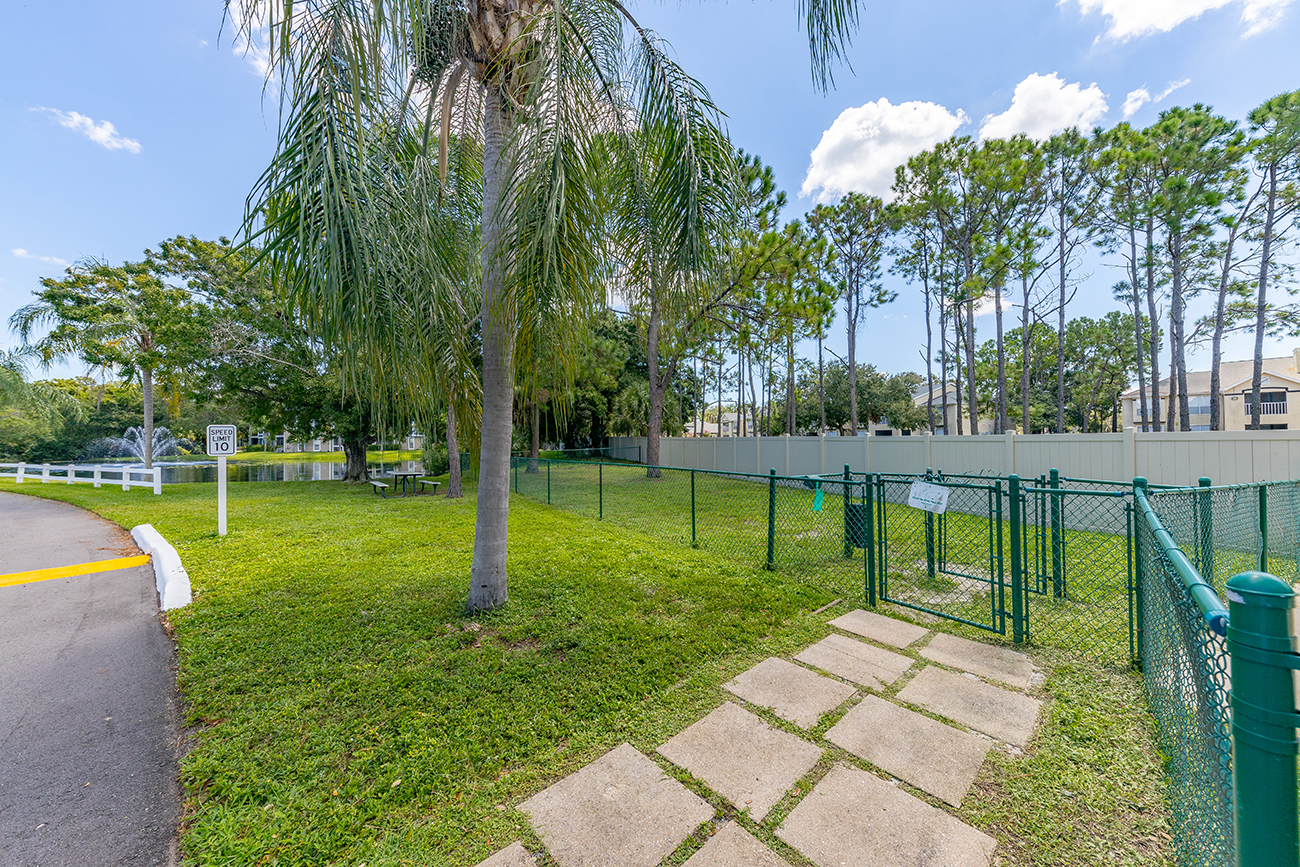 Fenced dog park for your furry roommates